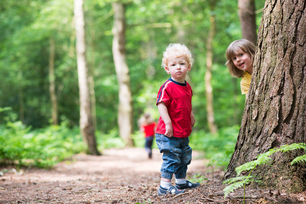 HIDE AND SEEK IN THE WOODS PHOTOGRAPH