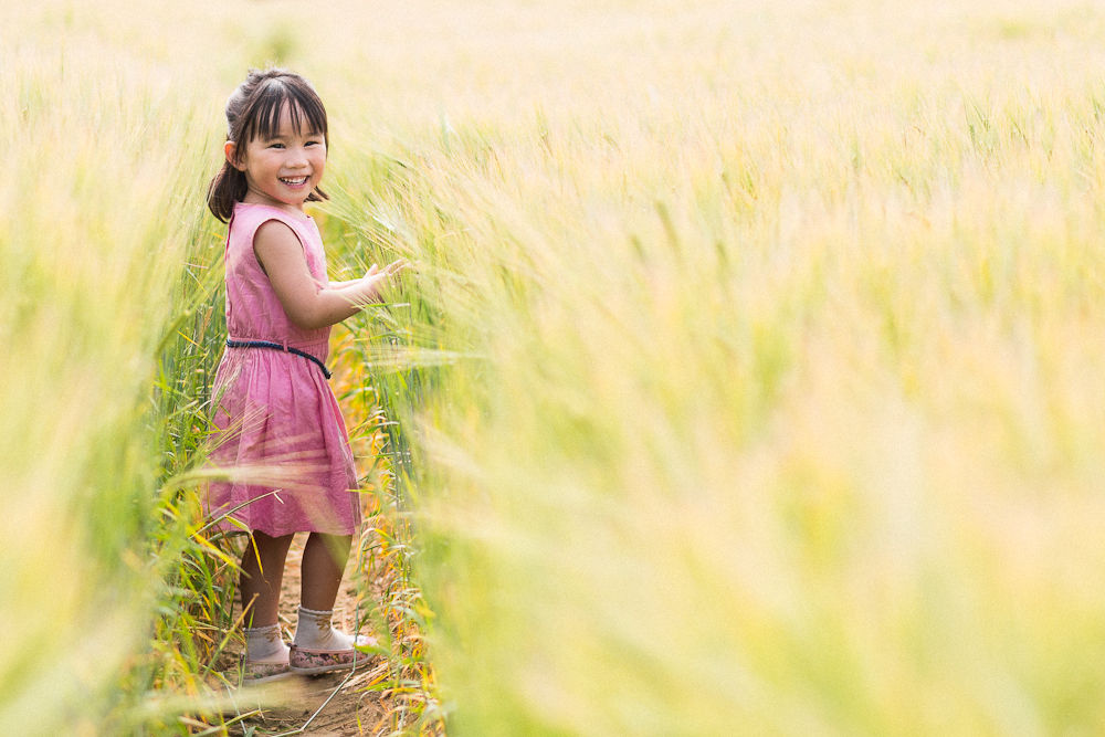 LITTLE GIRL IN CORN FIELD PHOTOGRAPH